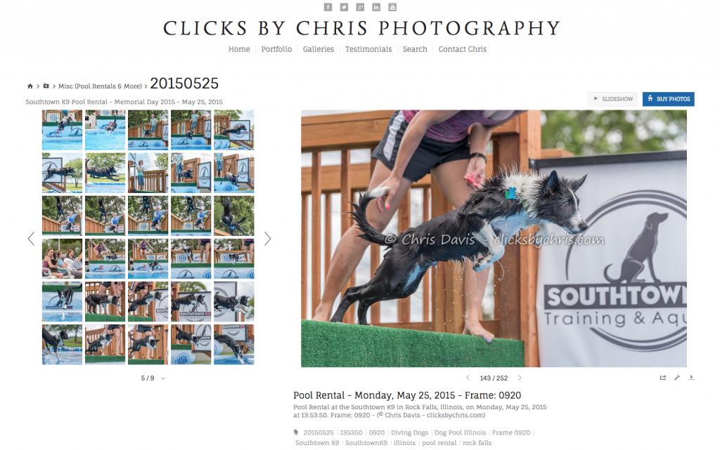 Photos - Southtown K9 - ClicksByChris.com