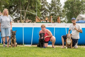 NADD / AKC Trial at the Southtown K9 in Rock Falls, Illinois, on Sunday, July 12, 2015 at 16:18:47. Frame: 6765 - (© Chris Davis - clicksbychris.com)