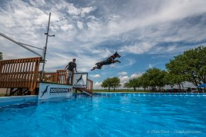 June 4-5 UpDog & Dock Diving Southtown K9