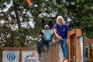 NADD / AKC Dock Diving Trial - Southtown K9 - Sunday, June 12, 2016