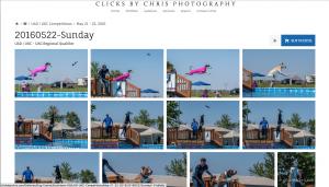 June 4-5 UpDog & Dock Diving Southtown K9